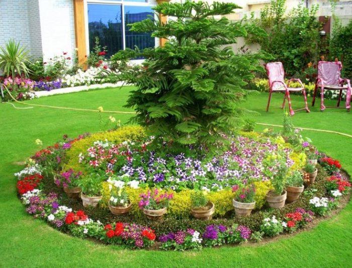 Membuat Taman Sendiri