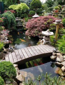 kolam ikan minimalis di halaman rumah dengan desain terbaik